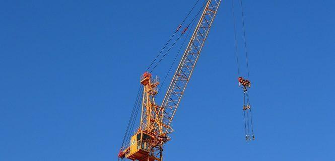 crane-905491_1920